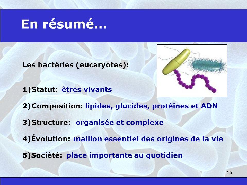 En résumé… Les bactéries (eucaryotes): Statut: êtres vivants