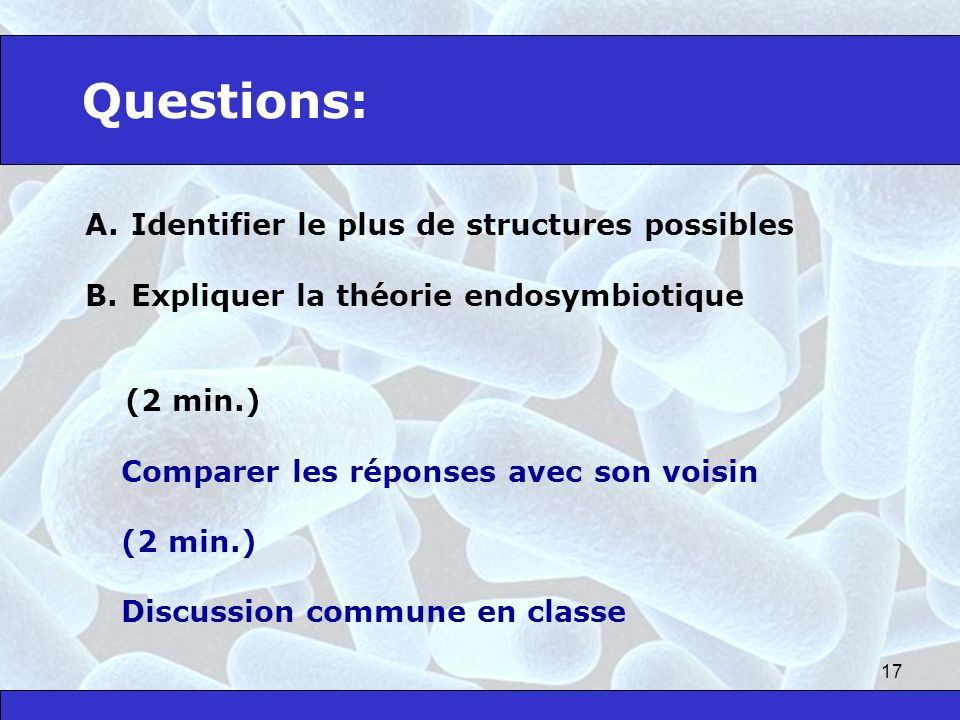 Questions: Identifier le plus de structures possibles