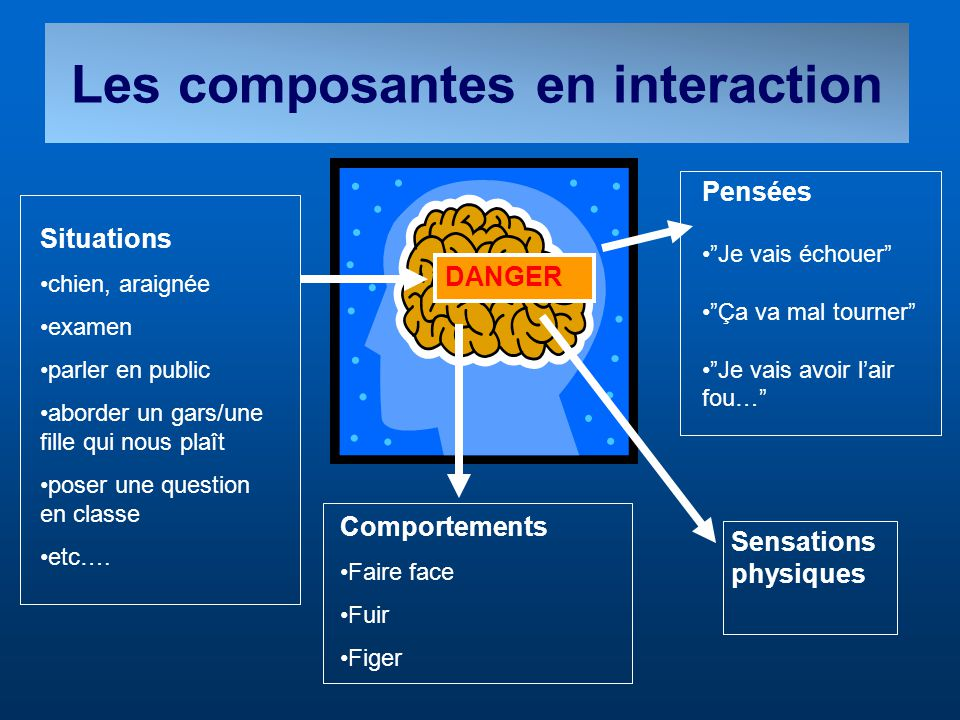 Les composantes en interaction