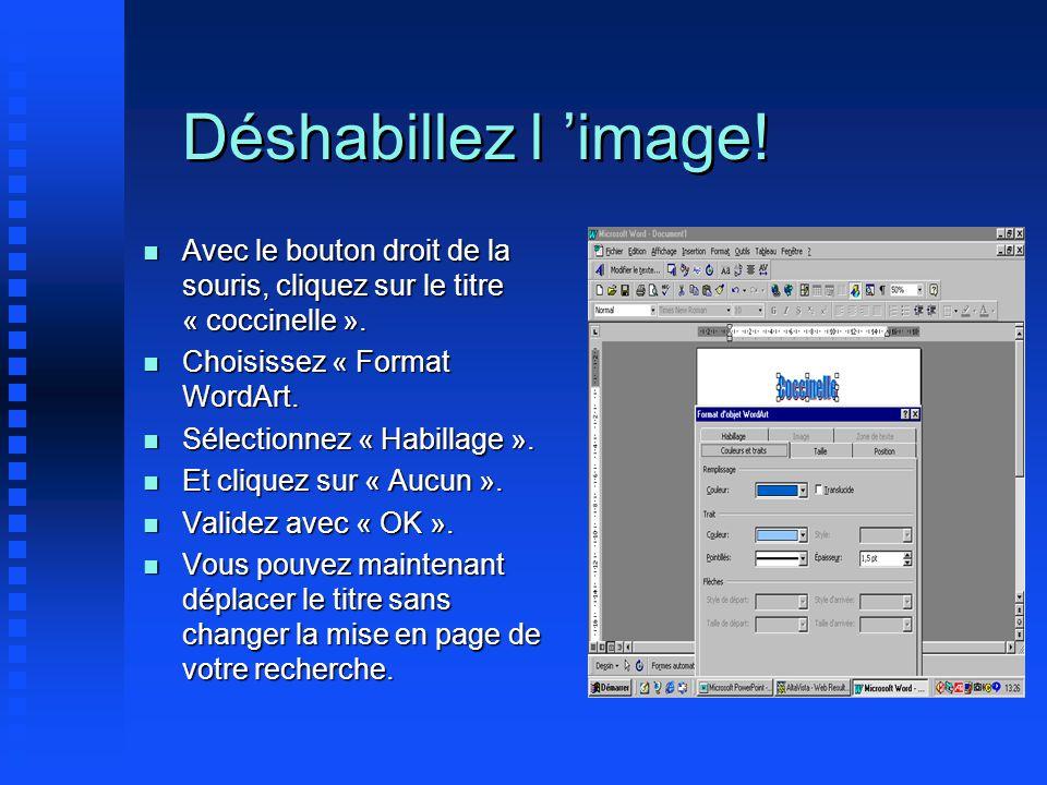 Déshabillez l 'image! Avec le bouton droit de la souris, cliquez sur le titre « coccinelle ». Choisissez « Format WordArt.
