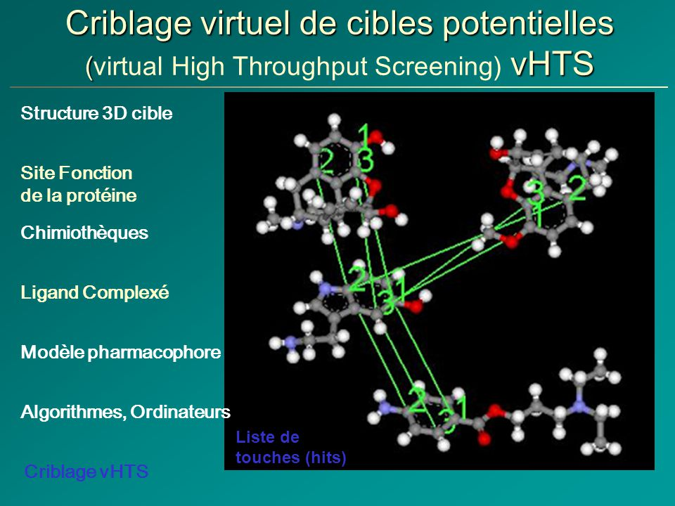Criblage virtuel de cibles potentielles (virtual High Throughput Screening) vHTS