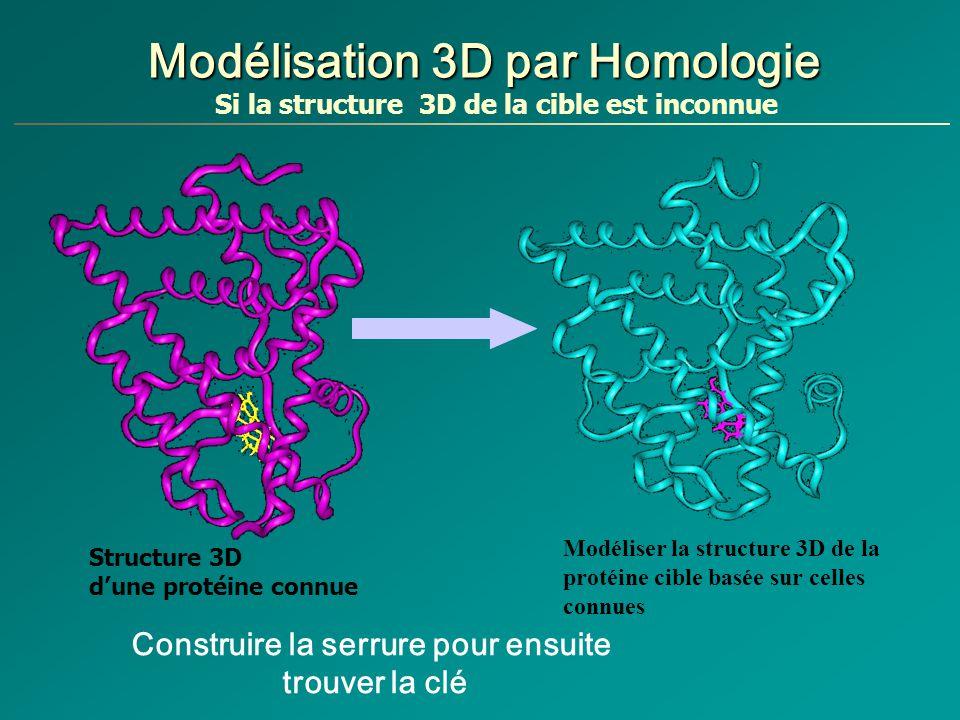 Modélisation 3D par Homologie