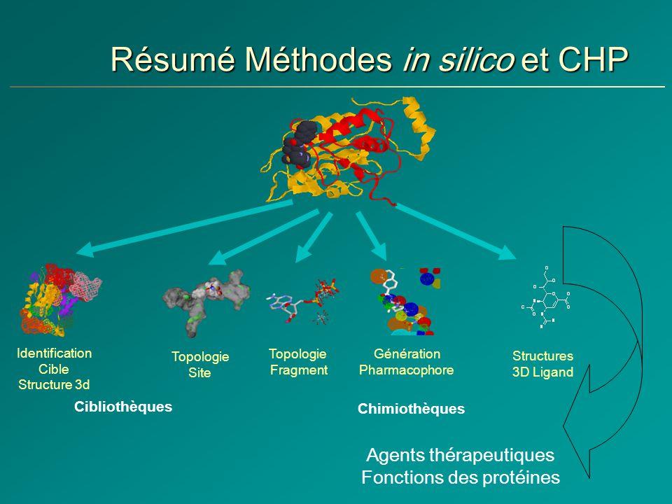 Résumé Méthodes in silico et CHP