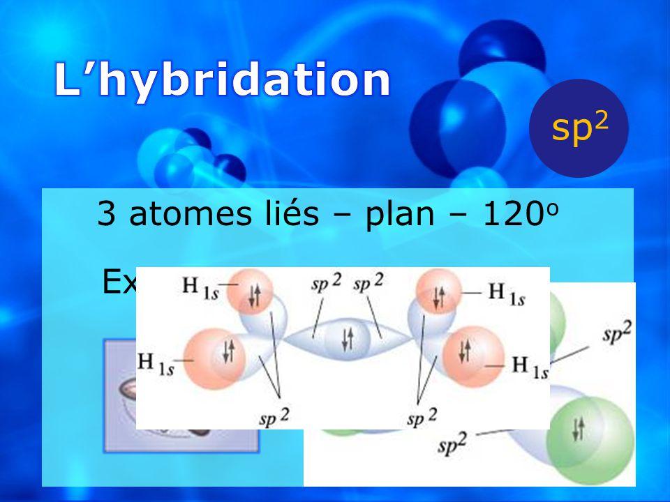 L'hybridation sp2 3 atomes liés – plan – 120o Ex.: BH3