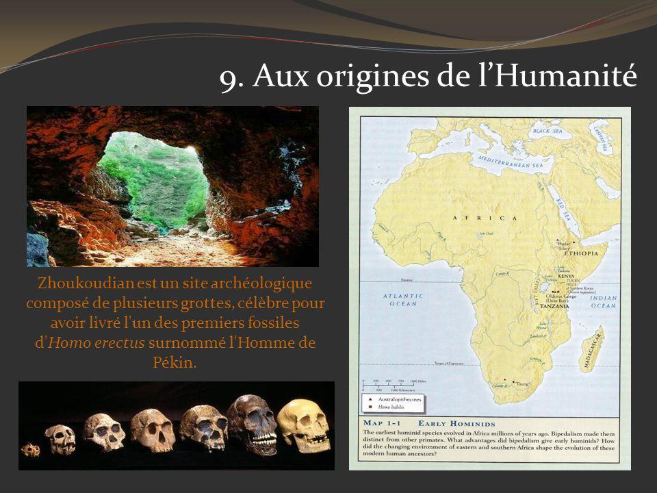 9. Aux origines de l'Humanité