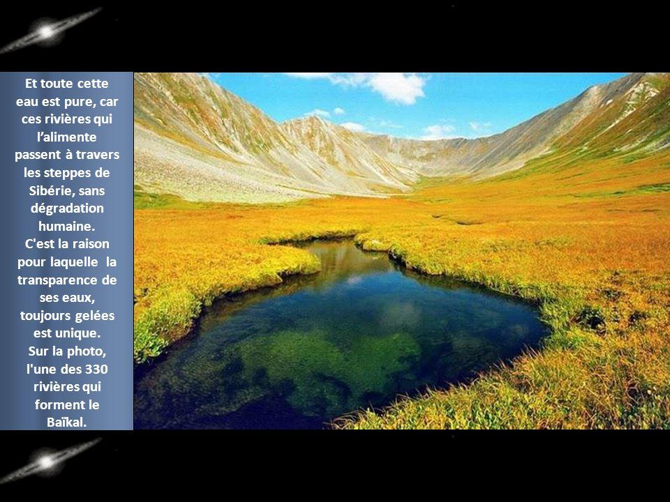 l une des 330 rivières qui forment le Baïkal.