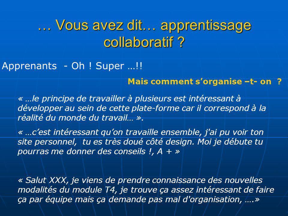 … Vous avez dit… apprentissage collaboratif