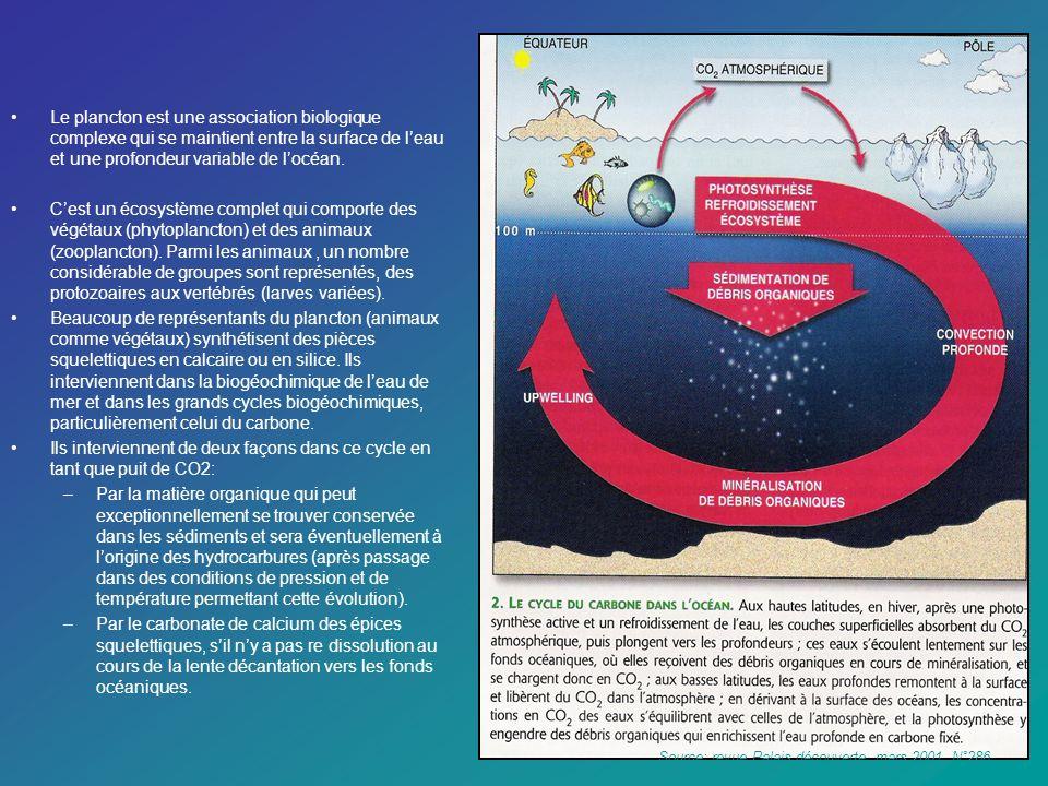 Le plancton est une association biologique complexe qui se maintient entre la surface de l'eau et une profondeur variable de l'océan.