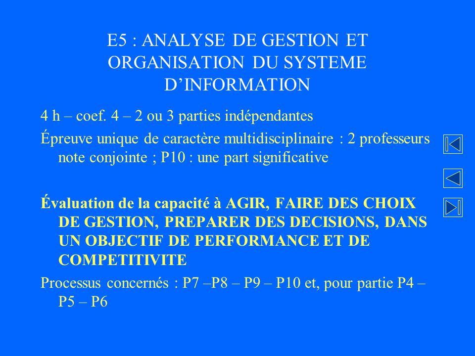 E5 : ANALYSE DE GESTION ET ORGANISATION DU SYSTEME D'INFORMATION