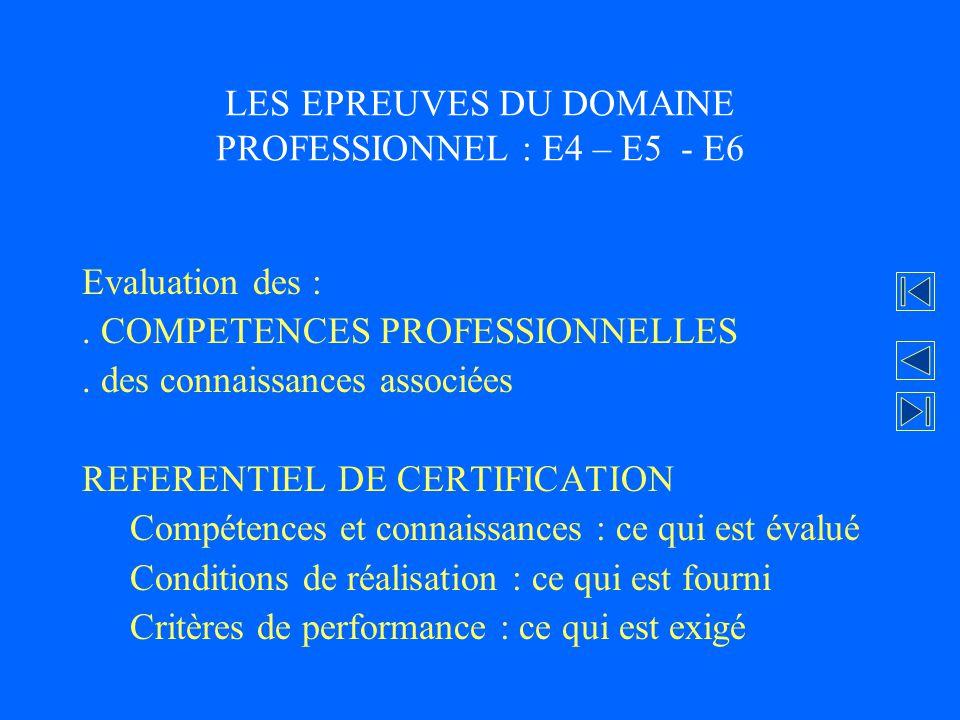 LES EPREUVES DU DOMAINE PROFESSIONNEL : E4 – E5 - E6