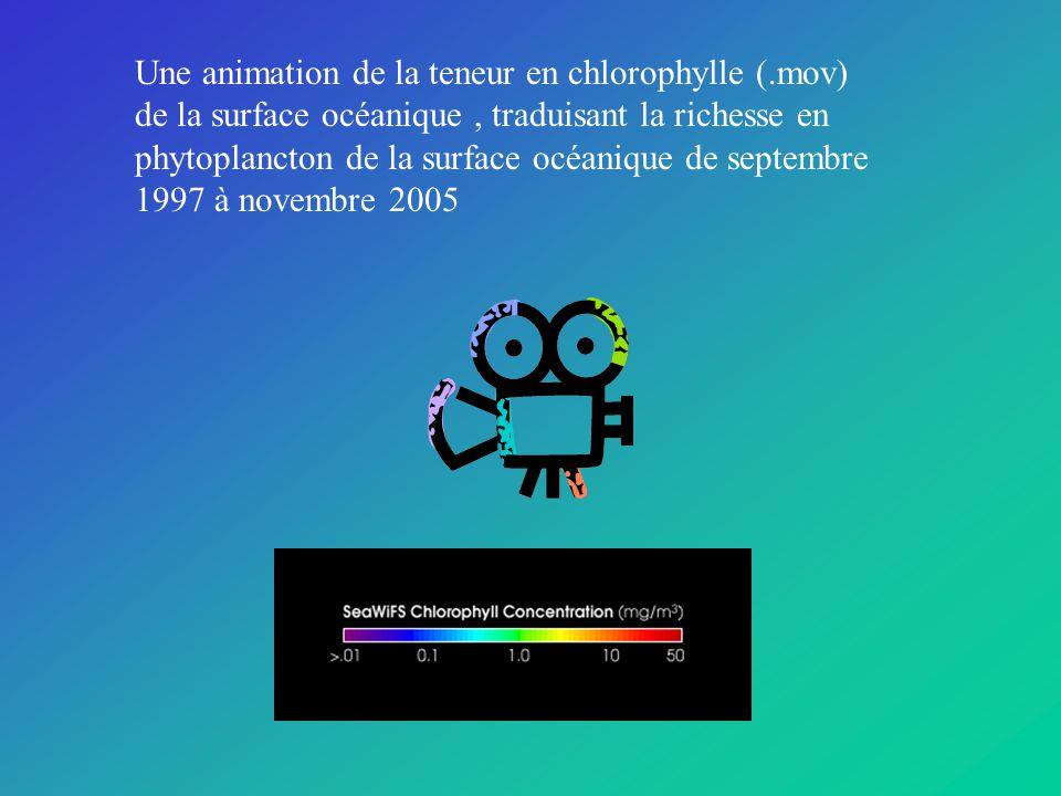 Une animation de la teneur en chlorophylle (