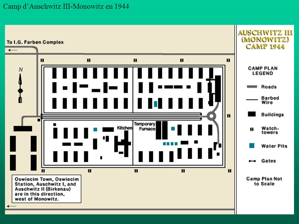 Camp d'Auschwitz III-Monowitz en 1944