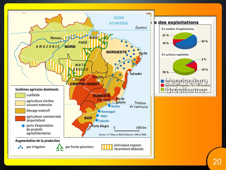 L'agriculture Brésilienne. 20