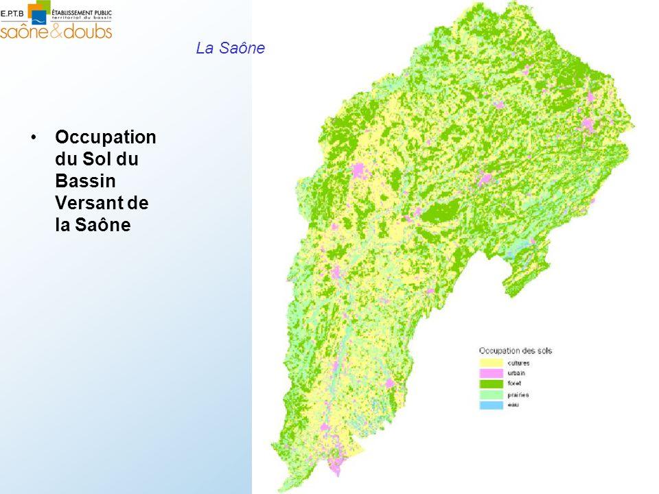 Occupation du Sol du Bassin Versant de la Saône
