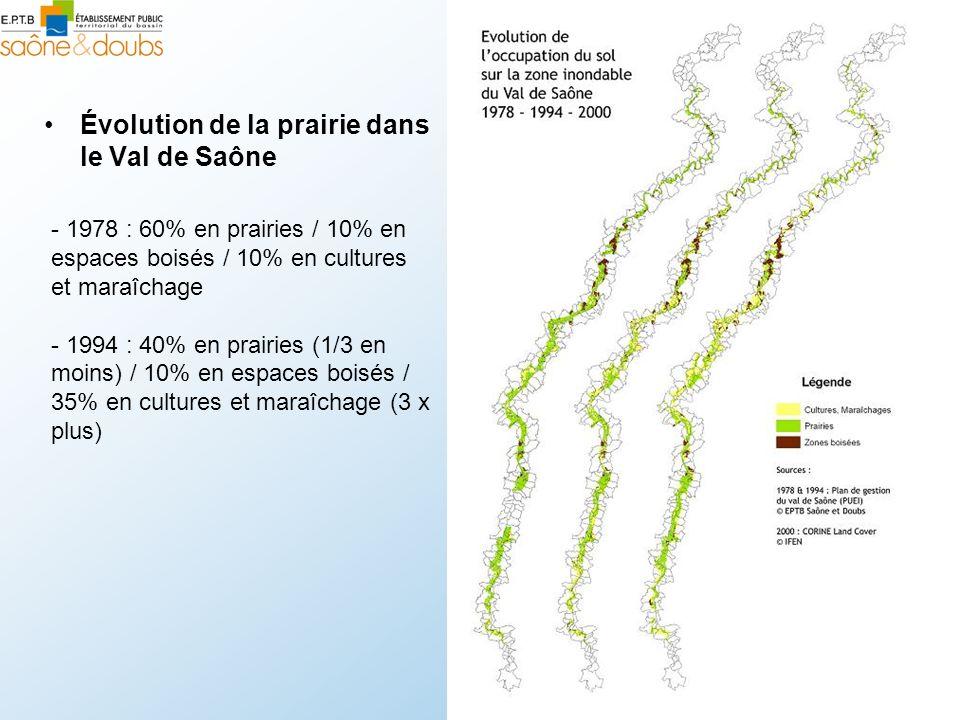 Évolution de la prairie dans le Val de Saône