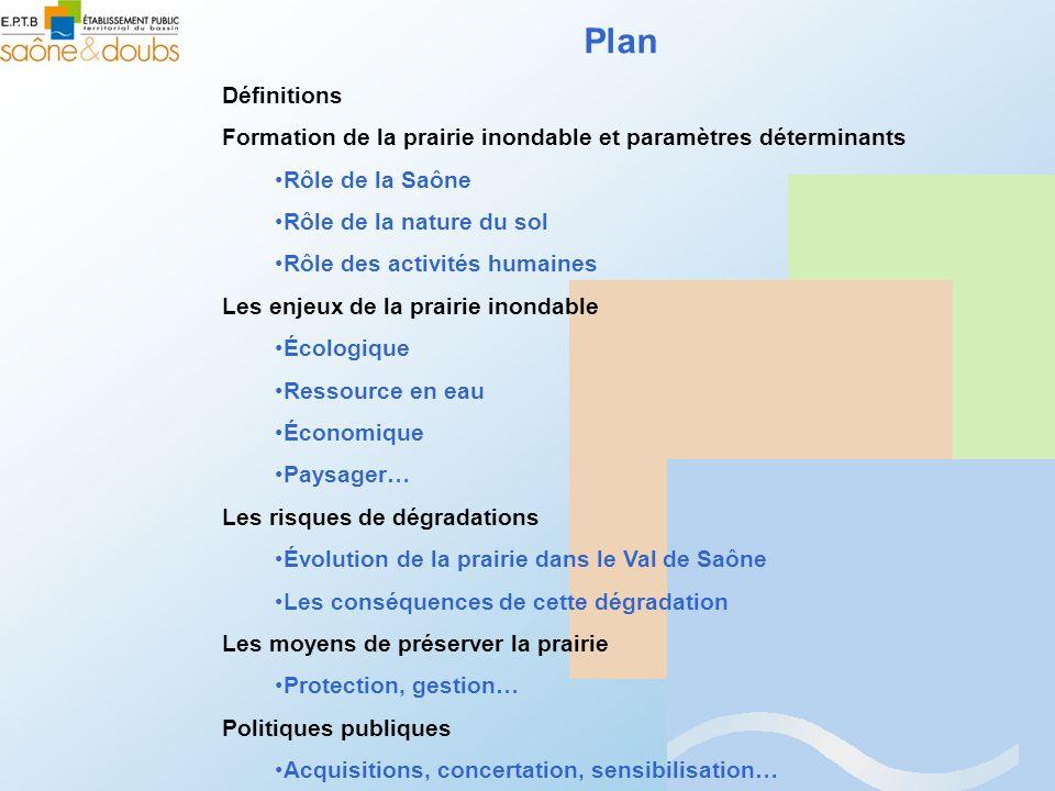Plan Définitions. Formation de la prairie inondable et paramètres déterminants. Rôle de la Saône.