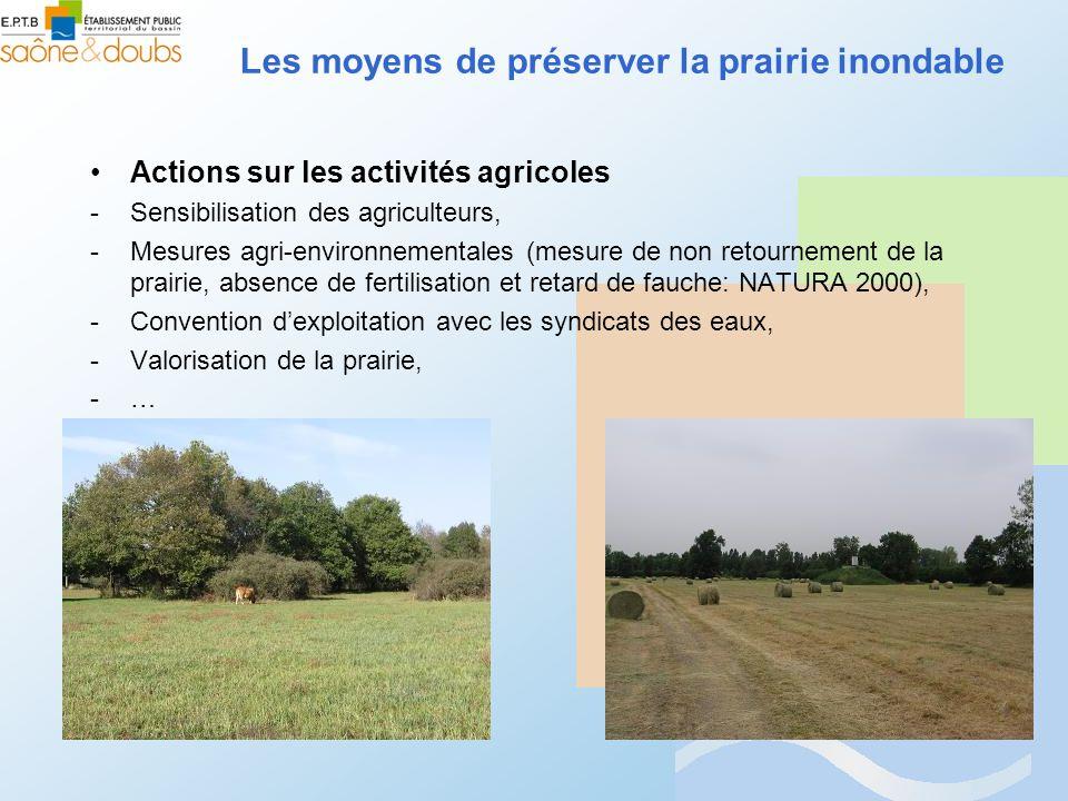 Les moyens de préserver la prairie inondable