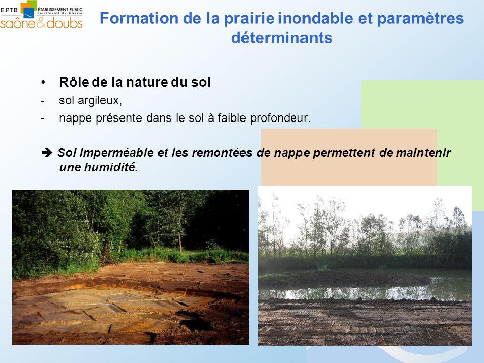 Formation de la prairie inondable et paramètres déterminants