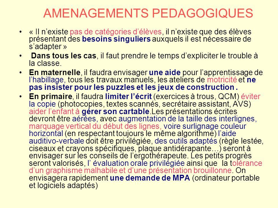 AMENAGEMENTS PEDAGOGIQUES