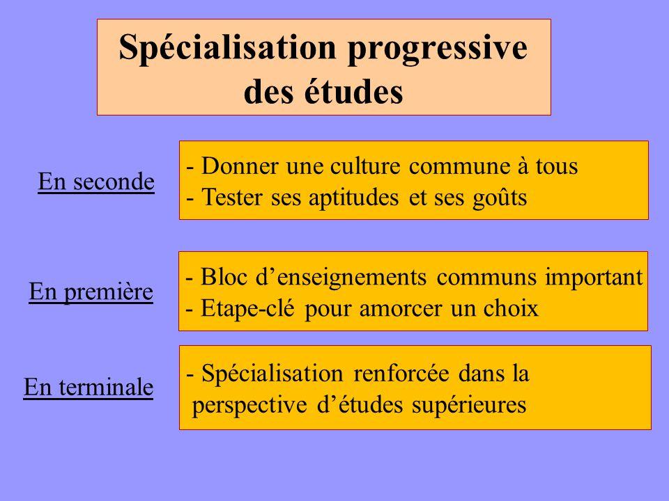 Spécialisation progressive des études