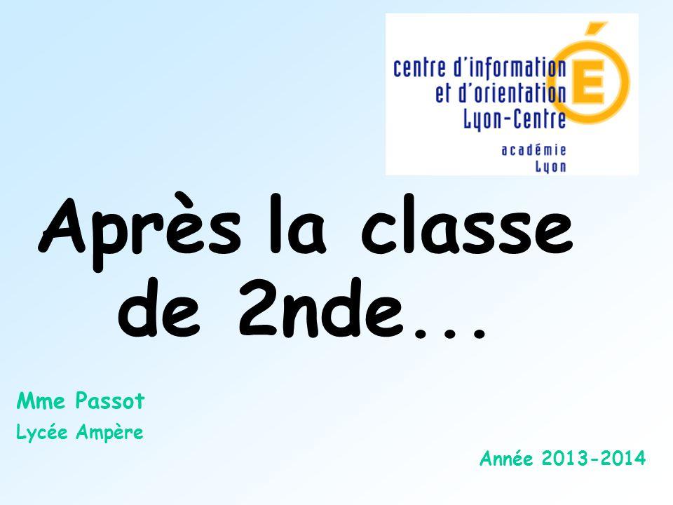 Mme Passot Lycée Ampère Année 2013-2014