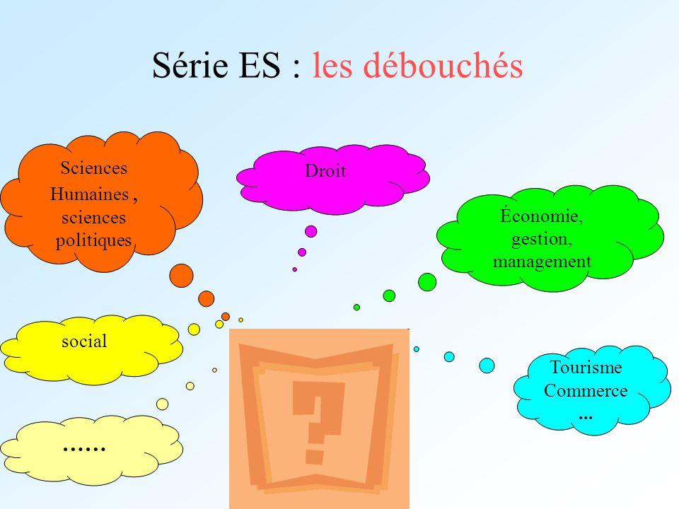 Série ES : les débouchés