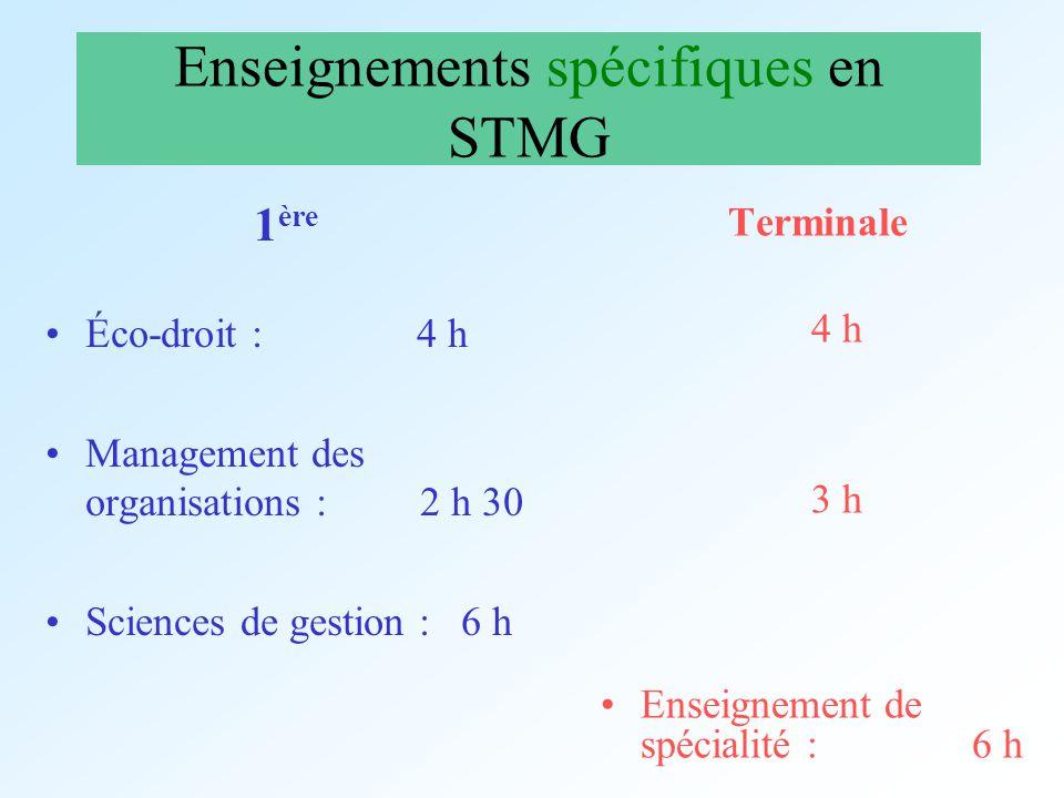 Enseignements spécifiques en STMG