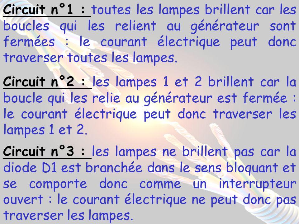Circuit n°1 : toutes les lampes brillent car les boucles qui les relient au générateur sont fermées : le courant électrique peut donc traverser toutes les lampes.