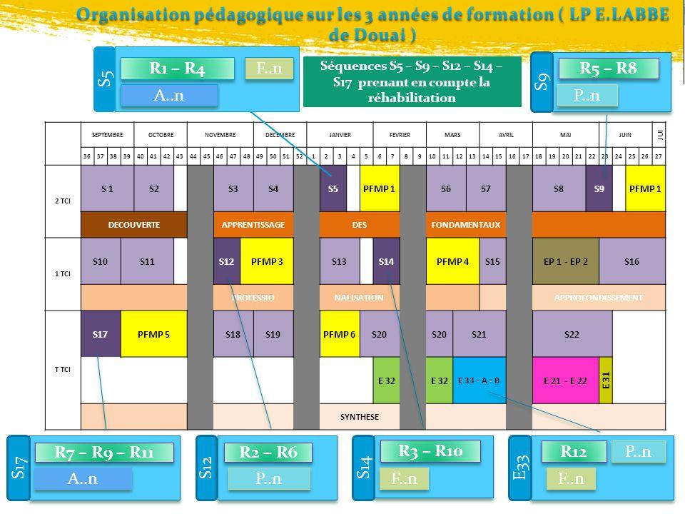 Organisation pédagogique sur les 3 années de formation ( LP E
