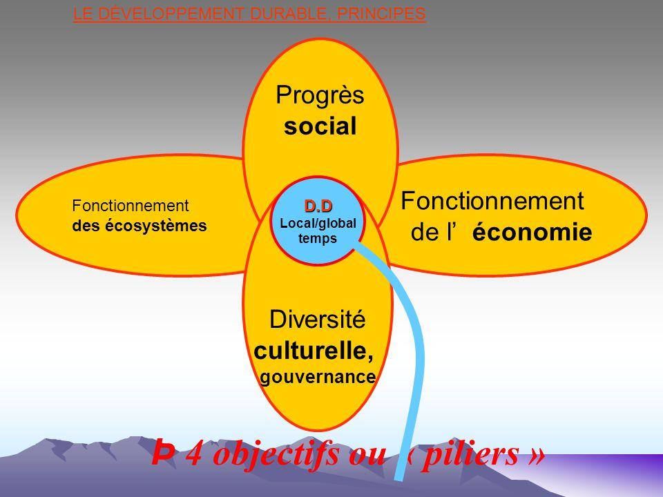 Þ 4 objectifs ou « piliers »