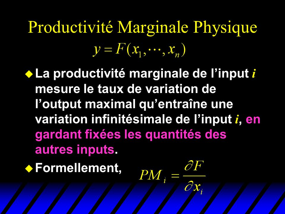 Productivité Marginale Physique