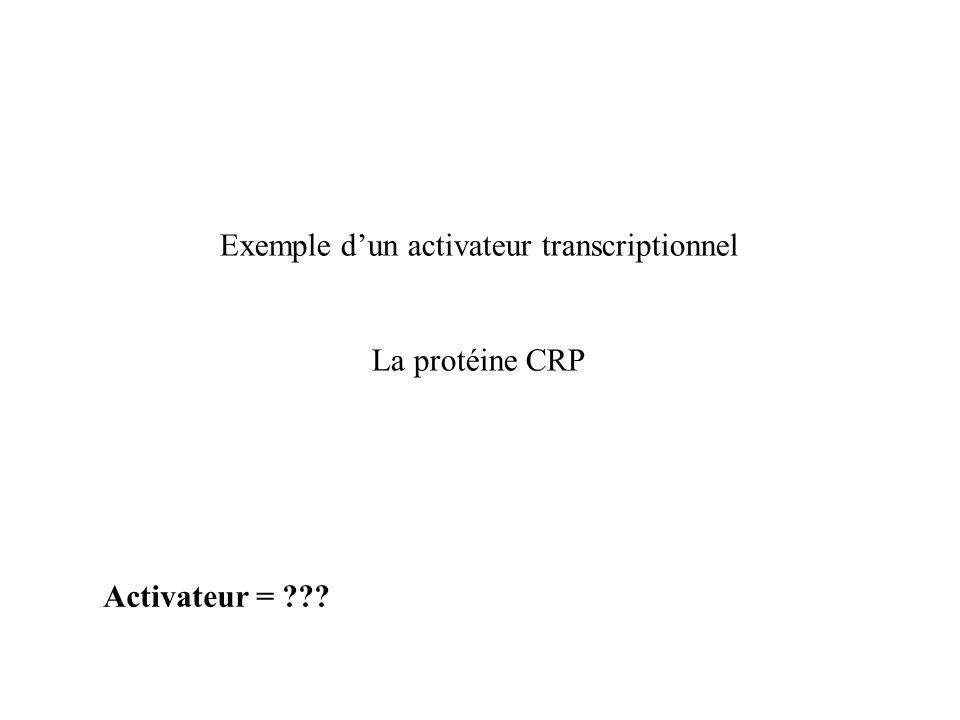 Exemple d'un activateur transcriptionnel