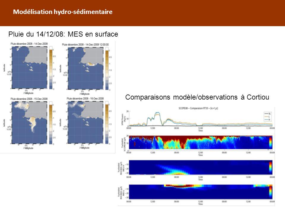 Modélisation hydro-sédimentaire
