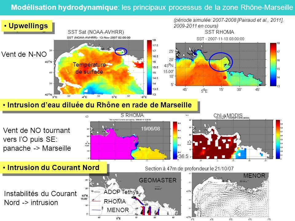 Intrusion d'eau diluée du Rhône en rade de Marseille