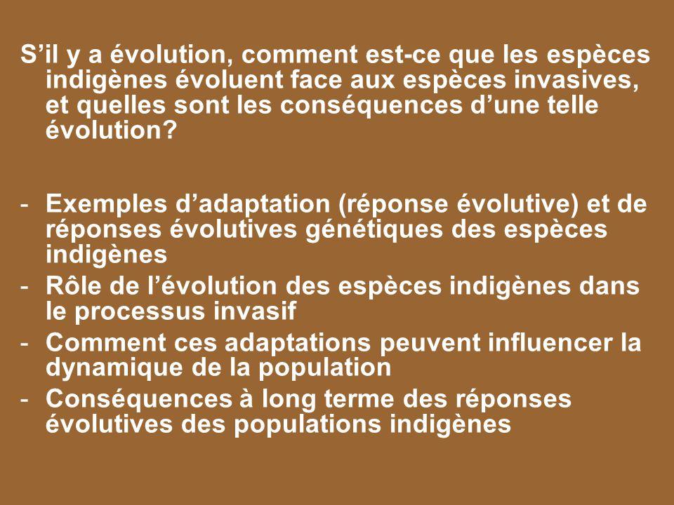 S'il y a évolution, comment est-ce que les espèces indigènes évoluent face aux espèces invasives, et quelles sont les conséquences d'une telle évolution
