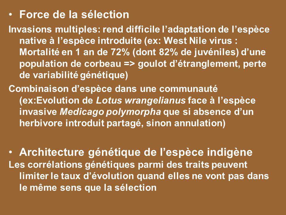 Architecture génétique de l'espèce indigène