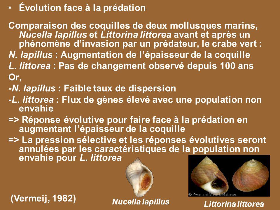 Évolution face à la prédation