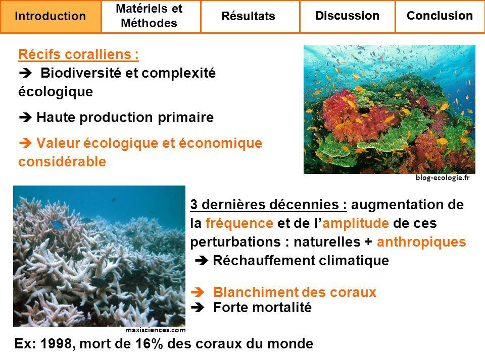 Biodiversité et complexité écologique Haute production primaire