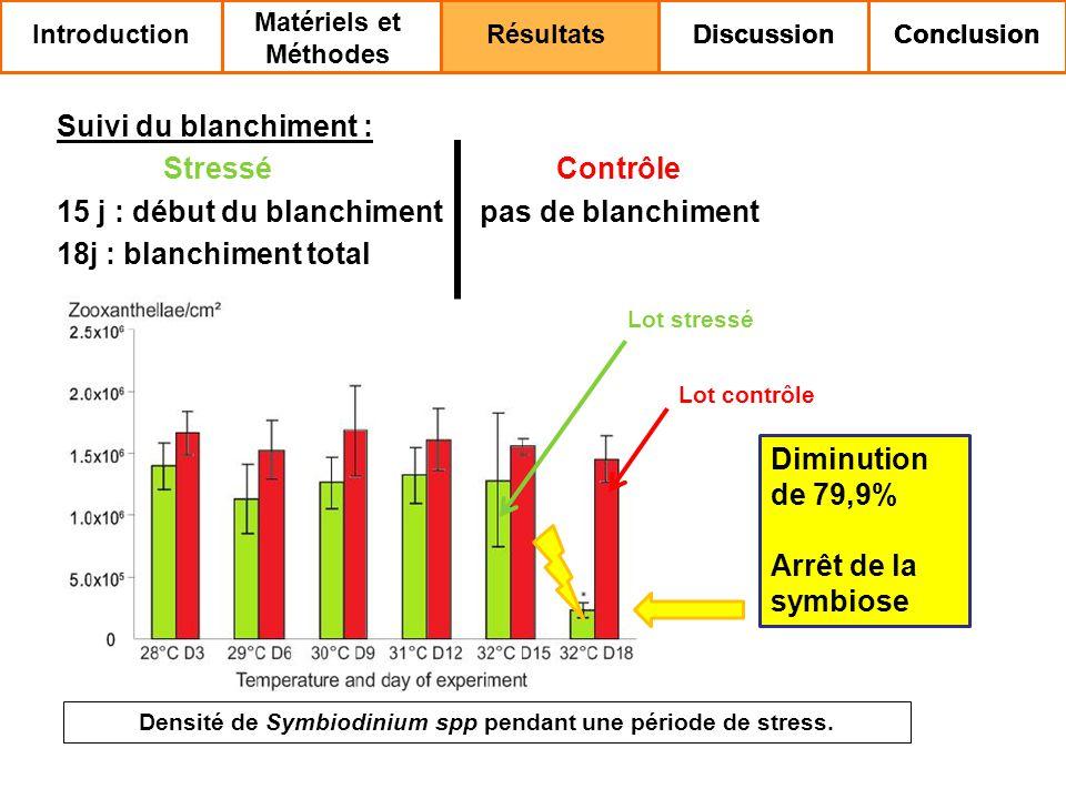 Densité de Symbiodinium spp pendant une période de stress.