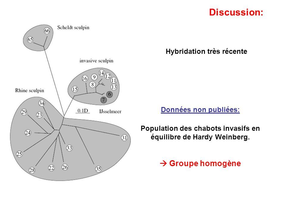 Population des chabots invasifs en équilibre de Hardy Weinberg.