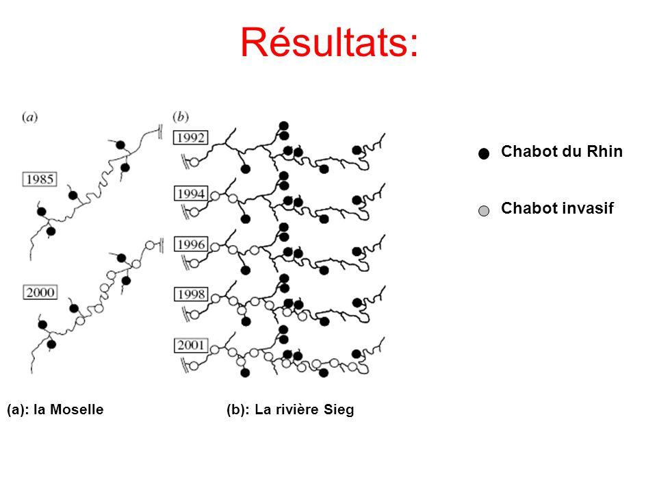 Résultats: Chabot du Rhin Chabot invasif