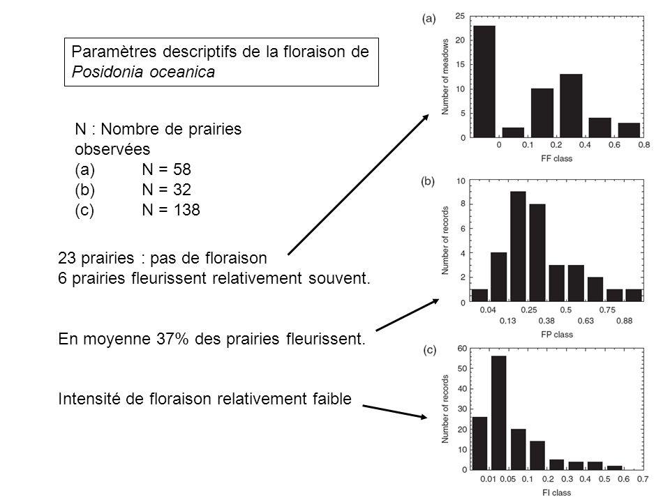 Paramètres descriptifs de la floraison de Posidonia oceanica