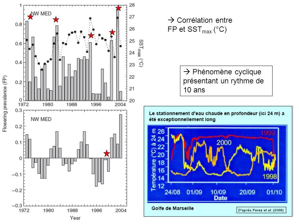  Corrélation entre FP et SSTmax (°C)