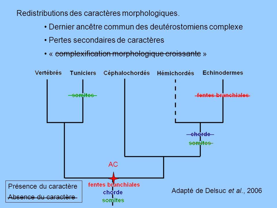 Redistributions des caractères morphologiques.