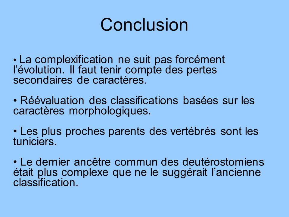 Conclusion La complexification ne suit pas forcément l'évolution. Il faut tenir compte des pertes secondaires de caractères.