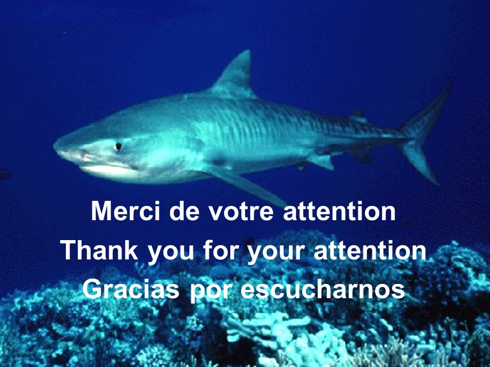 Merci de votre attention Thank you for your attention Gracias por escucharnos