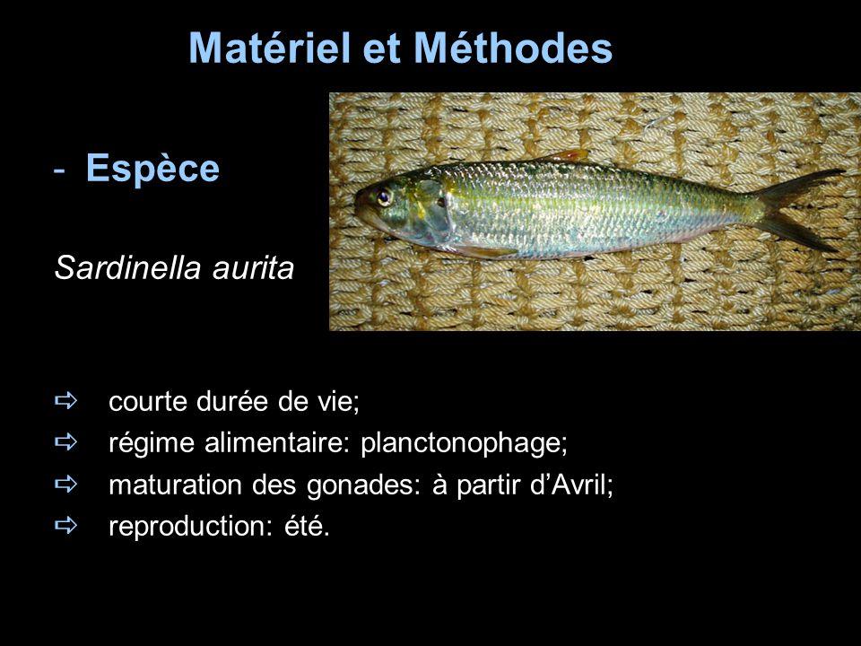 Matériel et Méthodes Espèce Sardinella aurita a courte durée de vie;