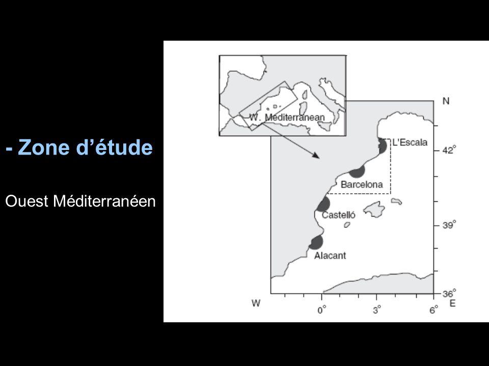 - Zone d'étude Ouest Méditerranéen