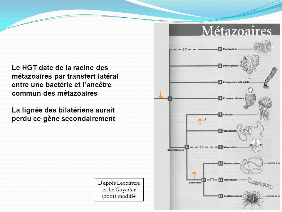 D'après Lecointre et Le Guyader (2001) modifié