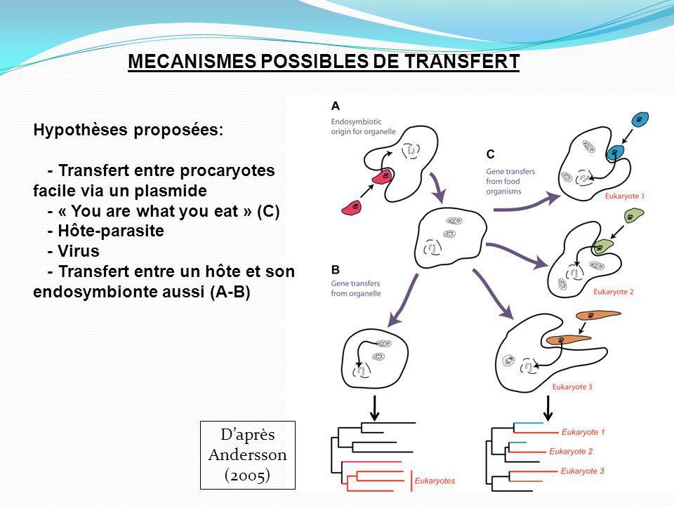 MECANISMES POSSIBLES DE TRANSFERT